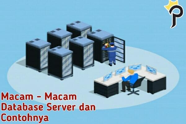 macam - macam database server dan contohnya